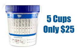 5 Cups Only $25